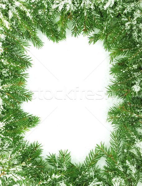 クリスマス フレームワーク 雪 孤立した 白 森林 ストックフォト © bloodua