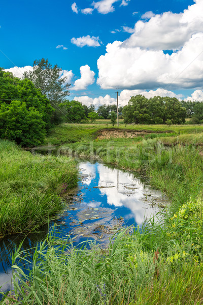 Summer landscape with river Stock photo © bloodua