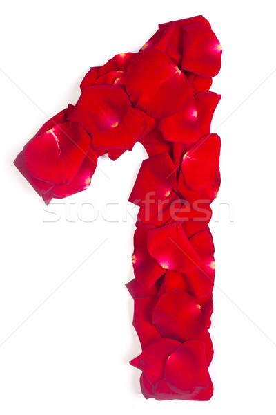 number 1 made from red petals rose on white Stock photo © bloodua