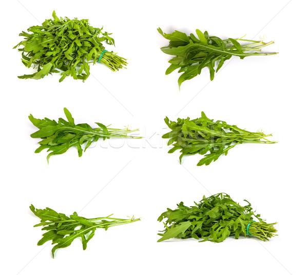 set of Arugula/rucola  fresh heap leaf on white Stock photo © bloodua