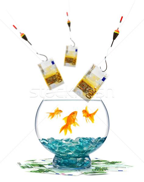 ストックフォト: 金魚 · 水族館 · 白 · 魚 · ガラス · 金融