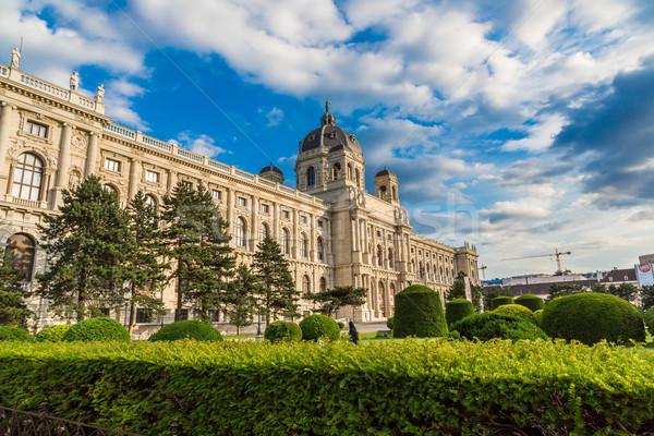 Müze doğal tarih Viyana Avusturya görmek Stok fotoğraf © bloodua
