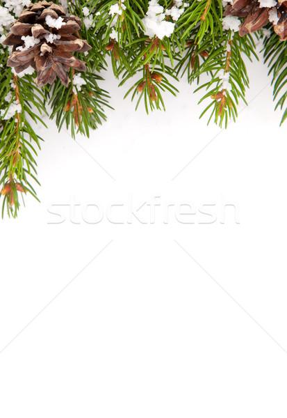 Christmas struktura śniegu odizolowany biały szczęśliwy Zdjęcia stock © bloodua