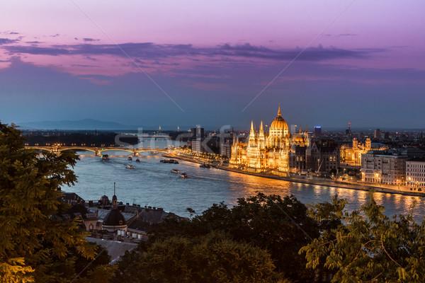 パノラマ ブダペスト ハンガリー チェーン 橋 川 ストックフォト © bloodua