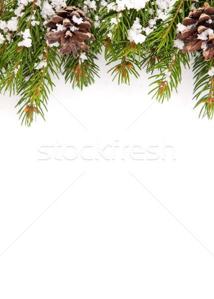 Karácsony váz hó izolált fehér boldog Stock fotó © bloodua