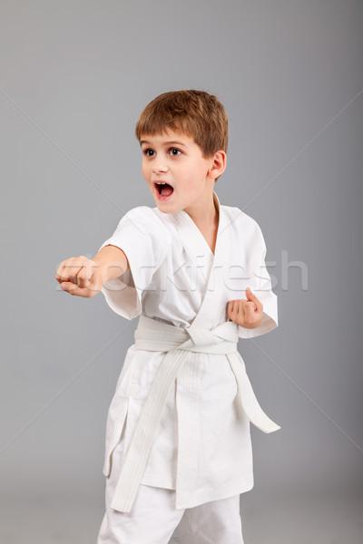 каратэ мальчика белый кимоно изолированный Сток-фото © bloodua
