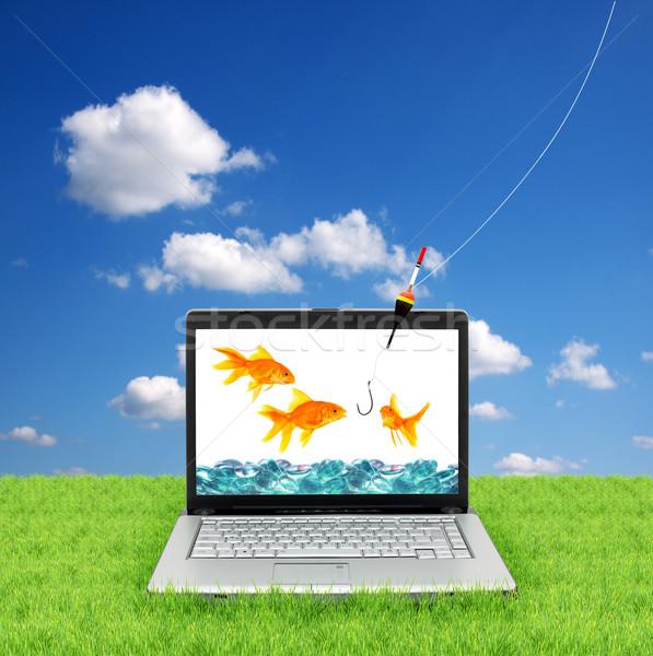 Akvaryum balığı dizüstü bilgisayar yalıtılmış beyaz çim Internet Stok fotoğraf © bloodua
