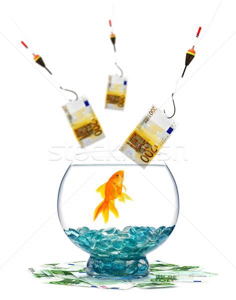 Goldfish аквариум белый рыбы стекла Финансы Сток-фото © bloodua