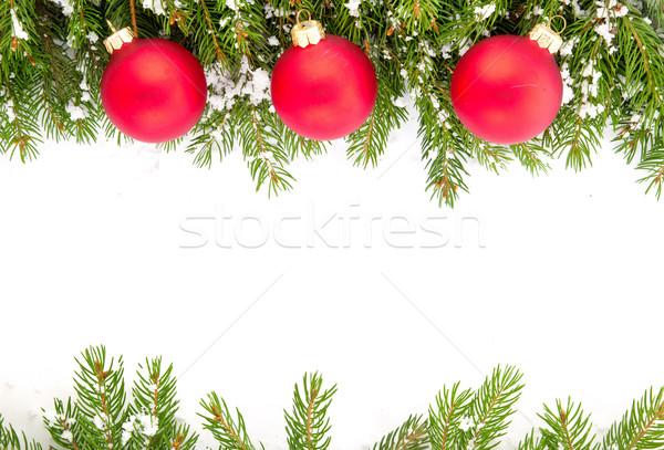 Natale verde isolato bianco natura Foto d'archivio © bloodua