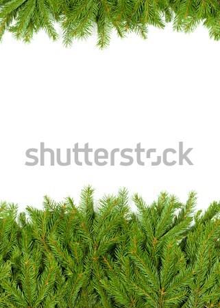 クリスマス フレームワーク 緑 孤立した 白 背景 ストックフォト © bloodua