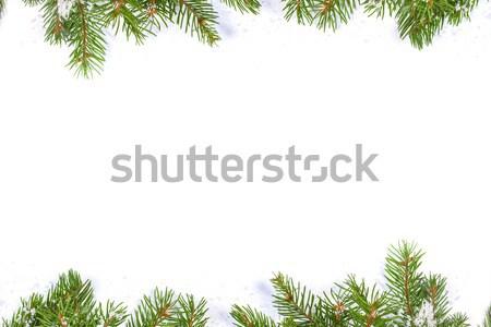 Karácsony váz hó izolált fehér zöld Stock fotó © bloodua