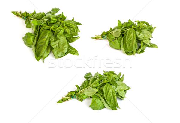 Szett friss zöld bazsalikom levelek fehér Stock fotó © bloodua