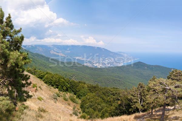 南 半島 山 風景 ウクライナ 海 ストックフォト © bloodua