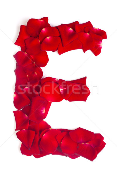 Letter E made from red petals rose on white Stock photo © bloodua