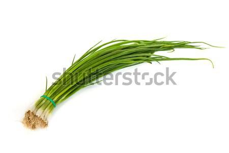 Fresh scallions isolated on white Stock photo © bloodua