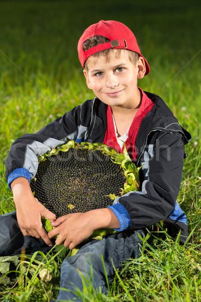 Jonge houden zonnebloem tuin cute Stockfoto © bloodua