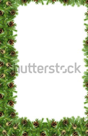 Karácsony váz zöld izolált fehér háttér Stock fotó © bloodua