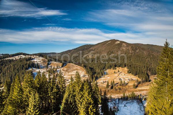 landscape  in mountains Carpathians, Ukraine Stock photo © bloodua