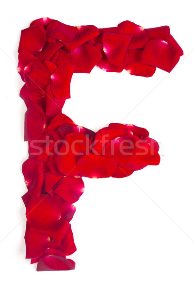 Letter F made from red petals rose on white Stock photo © bloodua
