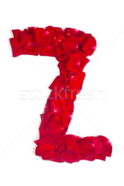 Letter Z made from red petals rose on white Stock photo © bloodua