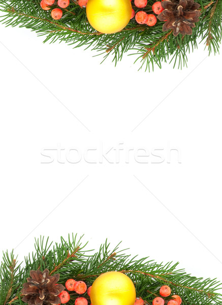 Christmas groene geïsoleerd witte boom Stockfoto © bloodua