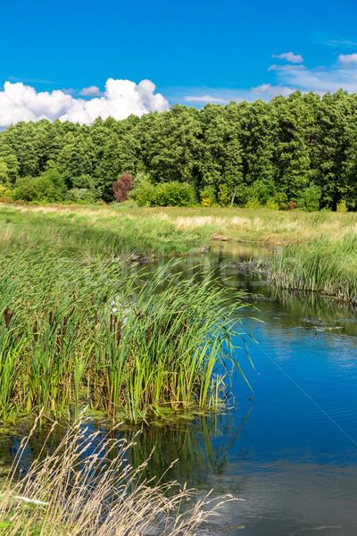 Сток-фото: лет · пейзаж · реке · облачный · небе · воды