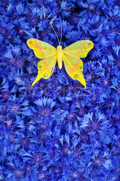 Stok fotoğraf: Bahar · mavi · sarı · kelebek · bahar · çiçekleri