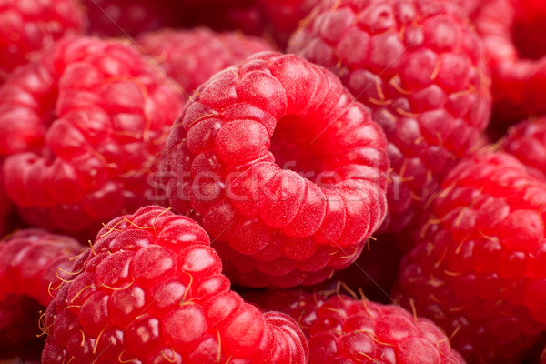 Ripe rasberry background. Close up macro shot of raspberries Stock photo © bloodua