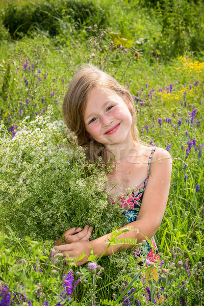 The little girl is stanging in the grass and holding a bouquet Stock photo © bloodua