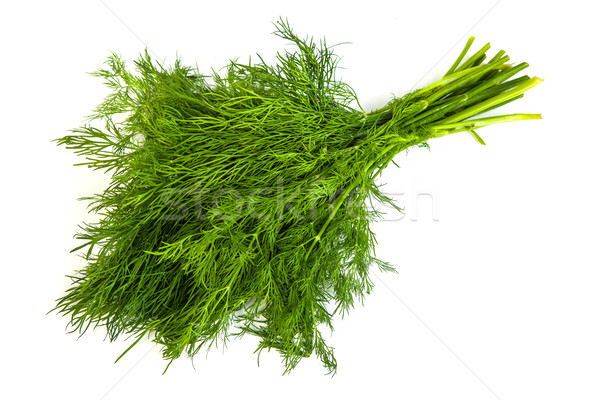 Fresh branches of green dill isolated Stock photo © bloodua