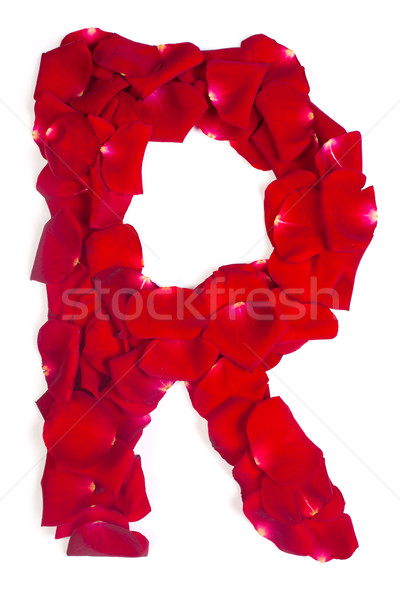 Letter R made from red petals rose on white Stock photo © bloodua