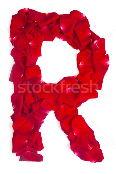 R betű piros szirmok rózsa fehér ábécé Stock fotó © bloodua