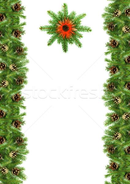 クリスマス フレームワーク 緑 孤立した 白 工場 ストックフォト © bloodua