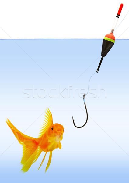 Fishing Stock photo © bloodua