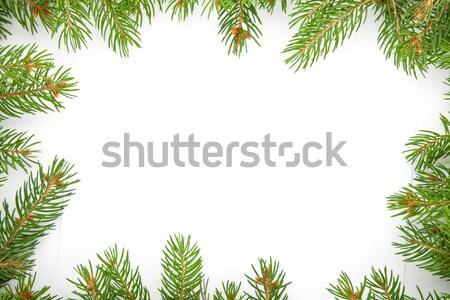 Christmas framework with snow Stock photo © bloodua