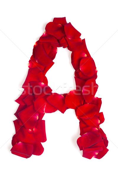 Schreiben rot Blütenblätter stieg weiß Alphabet Stock foto © bloodua