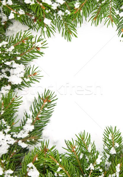 クリスマス フレームワーク 雪 孤立した 白 ツリー ストックフォト © bloodua