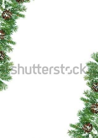 Christmas struktura śniegu odizolowany biały zielone Zdjęcia stock © bloodua
