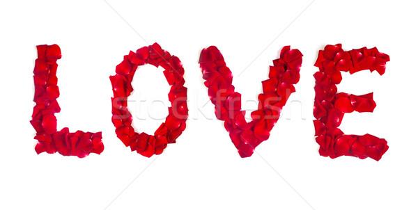Liefde rozenblaadjes geïsoleerd witte Rood rose bloemblaadjes Stockfoto © bloodua