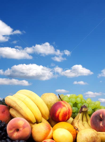Coloré saine fruits frais coup studio herbe Photo stock © bloodua