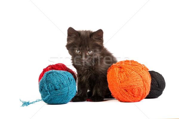 Negro gatito jugando rojo pelota hilados Foto stock © bloodua