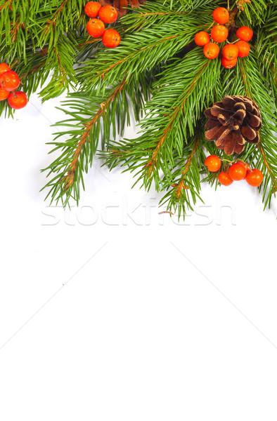クリスマス フレームワーク 装飾 孤立した 白 ストックフォト © bloodua