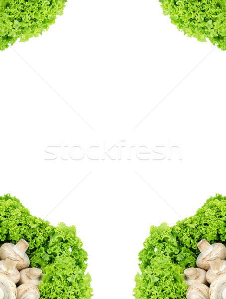 Champiñón frescos apetitoso setas cesta blanco Foto stock © bloodua