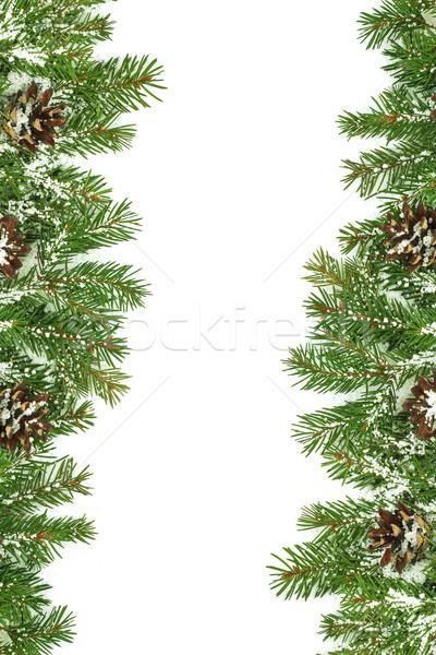 Noël neige isolé blanche vert Photo stock © bloodua