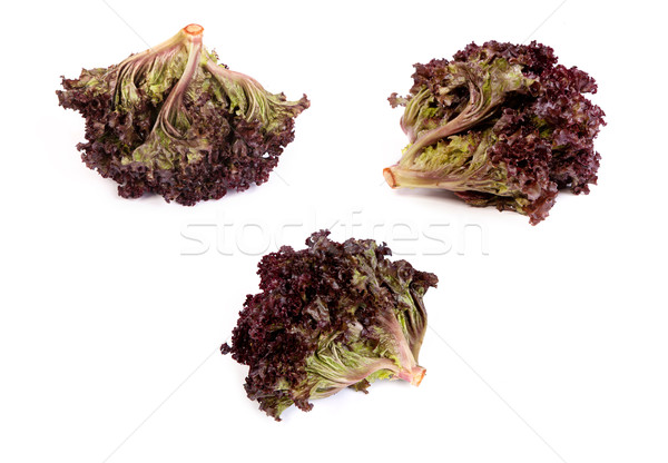 set of Fresh red Lettuce isolated on white Stock photo © bloodua