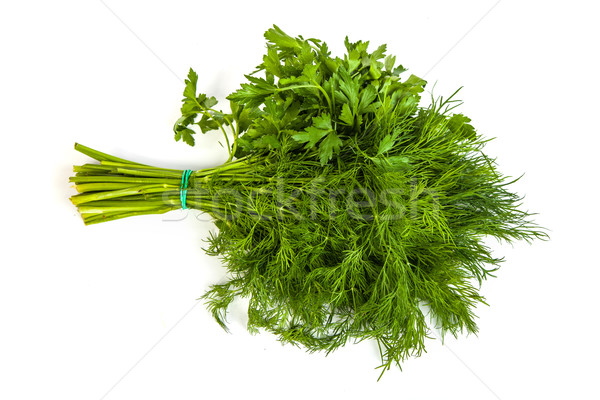 Fresh branches of green dill and Parsley tied isolated Stock photo © bloodua
