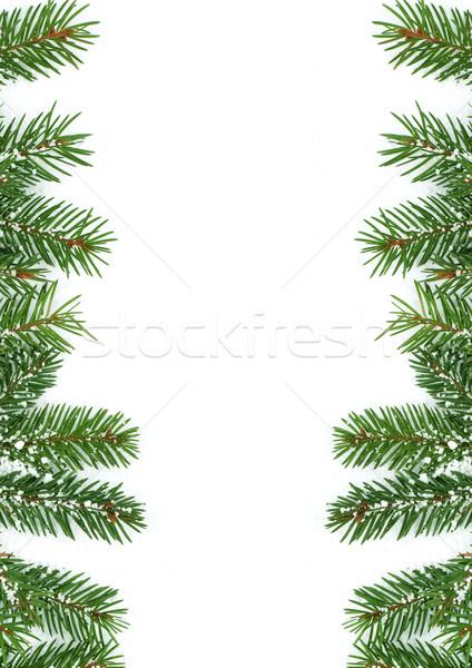クリスマス フレームワーク 雪 孤立した 白 自然 ストックフォト © bloodua