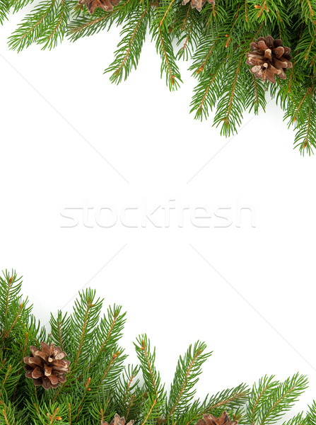 Christmas framework Stock photo © bloodua