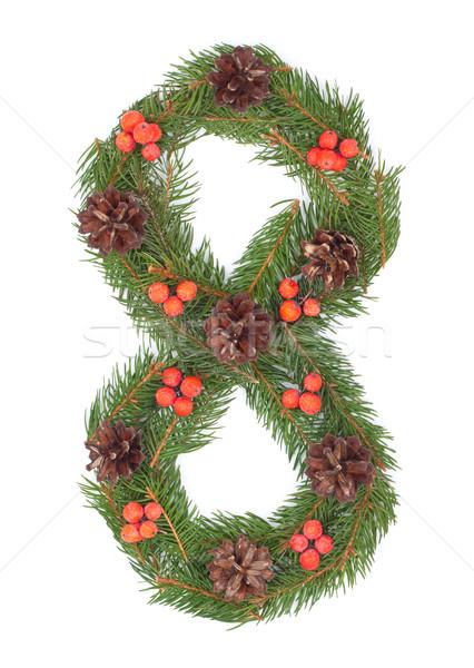 числа рождественская елка украшение полный набор дизайна Сток-фото © bloodua