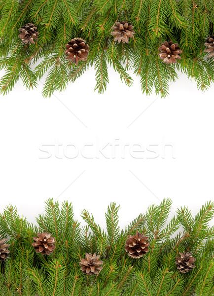 Karácsony váz zöld izolált fehér fa Stock fotó © bloodua